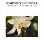 Domenico Facchineri.png